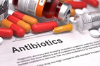 Macromolecules: Weapons in the Fight Against Antibiotic Resistance