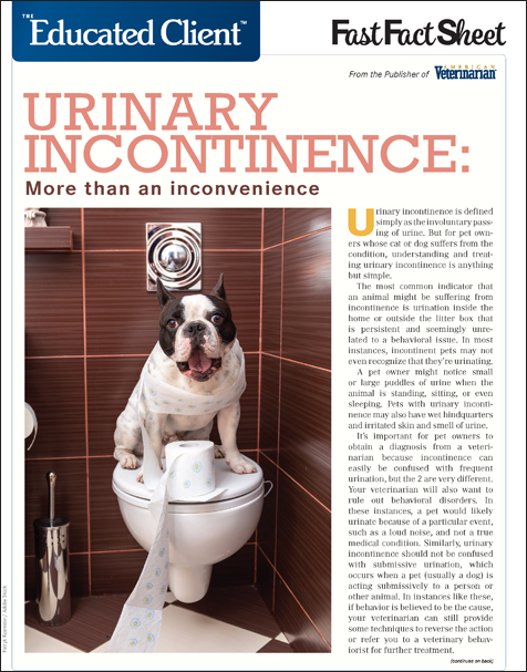 The Educated Client: Urinary Incontinence - More Than an Inconvenience