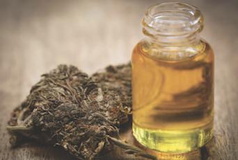 Review Site Names Best CBD Oils for Pets