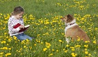 Dogs, Kids, and Reading Performance: Is There a Connection?