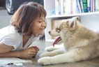 How Owners Attribute Emotions to Their Pets