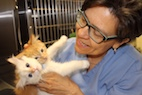 Meet Dr. Patti: American Humane Hero Veterinarian