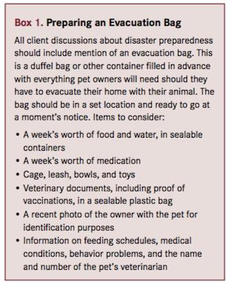 Disaster Bag