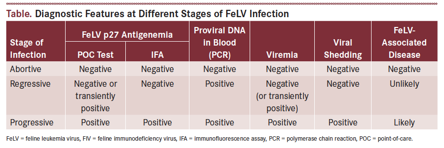 FeLV InfectionTable