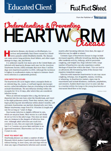 Heartworm in Dogs and Cats