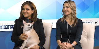 Pet Connections Diabetes