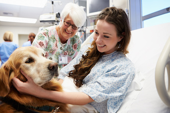 Therapy Dog and Patient