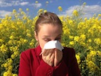 Living Environment Influences Allergy Risk in Dogs, People