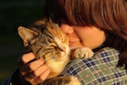 Surprise! Cats Actually Like People