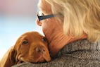 Animals in Nursing Homes: Are Health Risks Being Addressed?