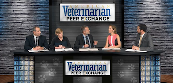 Pain Management in Companion Animals: New Therapies